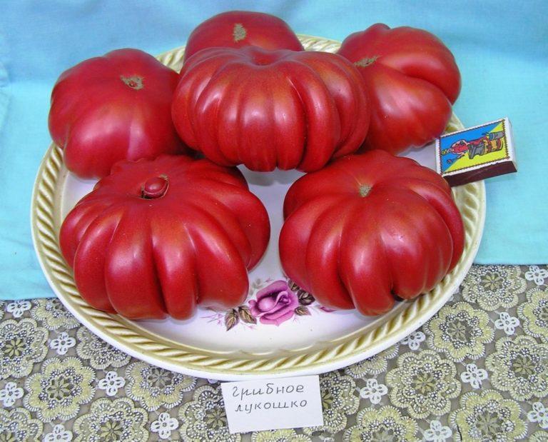 случае томат грибное лукошко с фото вагонки